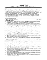 Manager Resume Objective Examples Case Sample Free Management