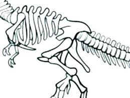 Fossil Coloring Pages Campoamorgolfinfo