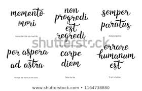 Latin Quotes Best Latin Mottos Latin Stock Vector Royalty Free Stunning Latin Motivational Quotes