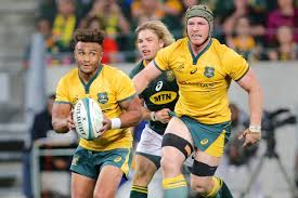 can the wallabies topple the springboks at ellis park