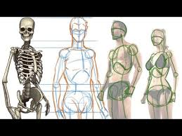Posted in diagrams leg parts anatomy. How To Draw The Human Figure Body Construction Tutorial Youtube