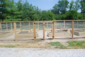 diy deer proof garden fence garden designs