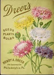 flower garden catalogs 98 best dreer s seed catalog images on