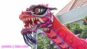 Sebagian besar orang ketika mendengar kata barongsai yang pertama kali terlintas di pikiran adalah sebuah pertunjukan seni yang bermula dari negeri china. Atraksi Barongsai Naga Pink Hiburan Ramah Anak Karnaval Karanganyar Youtube