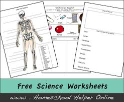 science worksheets homeschool helper online  science worksheets
