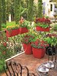 Image result for red garden pots