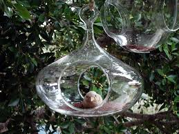 glass bird houses
