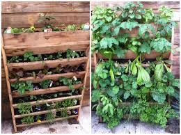 assorted vertical gardening burlington garden center plus this vertical garden from in vertical planter
