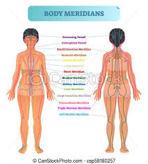 Body Meridian System Vector Illustration Scheme Chinese Energy Acupuncture Therapy Diagram Chart