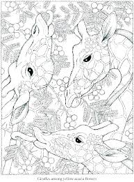 Free Printable Coloring Pages For Adults Wiseheartsco