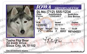 Pet Iowa Id Id Iowa Id Iowa Pet Pet Pet License License Iowa License