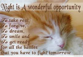 Good Night Quotes And Sweet Dreams Images For A Good Sleep Quote