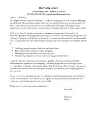Example Of Cover Letter For Director Position Cover Letter Templates
