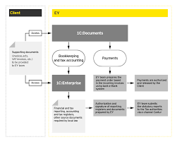 ey servicing model and interaction map