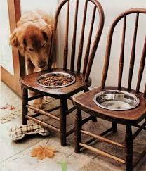 chairs-dog-bowl-chair
