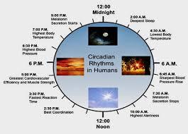 Aaasn Sleep An Alternative Approach To Sports Nutrition