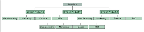 Business Organizational Chart Gorgeous Understanding Organizational Structures