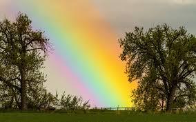 rainbow hd wallpapers 16