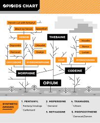 Common Opioids Opioid Help