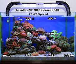 tmc aquaray reef white 2000 par professional say you only need 150 par with high pur led lighting keep clams grow sticks sps grow anything you want