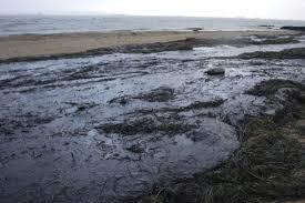 Экологические Проблемы Черного Моря Реферат relizua lance Реферат На Тему Экологические Проблемы Черного Моря