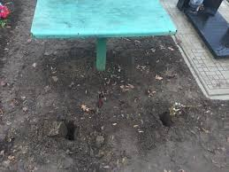 Жителя Сватівського району засуджено за наругу над могилою