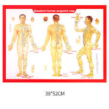 Hand Body Chart Us 3 11 11 Off Standard Meridian Acupuncture Points Chart And Zhenjiu Moxibustion Acupoint Massage Chart For Head Hand Foot Body Health Care In