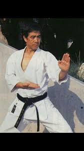 "A perfect ""shuto-uke"" by our soke Hirokazu Kanazawa.Oss! 