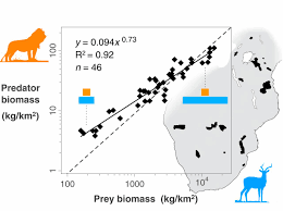 The Predator Prey Power Law Biomass Scaling Across