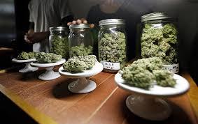 Image result for recreational marijuana