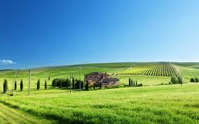 Wallpaper Green fields, house, trees ...