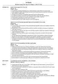 Cto Resume Example Cto Resume Samples Velvet Jobs 9