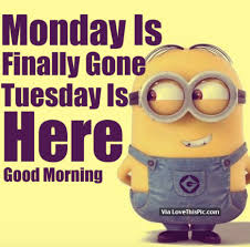 Image result for happy Tuesday!