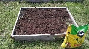 how to treat ants in raised garden beds
