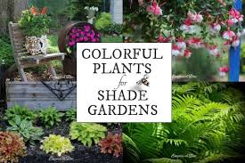 Small Picture Colorful Flowering Plants for Shade Gardens Empress of Dirt