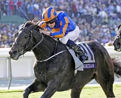 Breeders Cup Charts 2013 Magician Can Give Obrien Third Arlington Million Win