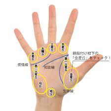 親指 の 付け根 の 名前