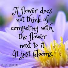 Quotes About Flowers Blooming Impressive Bloom With Flower Next To It Quotes