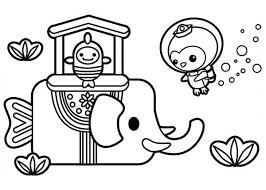 Small Picture Captain Barnacles from The Octonauts Meet Sea Elephant Coloring