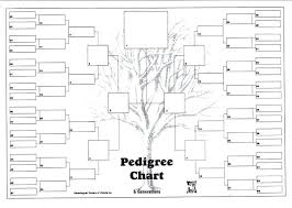 Generation Family Trees 6 Tree Template Excel 8 Chart Free