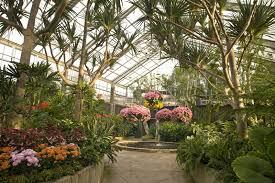 get away with a trip to georgia s best gardens