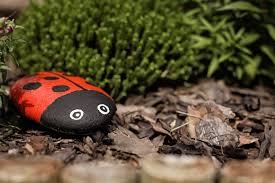 Ladybug Bedroom June Bug Diy Pet Rocks For The Garden Ashley Furniture