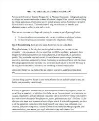 an essay example info an essay example college admission application essay sample essay format examples