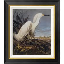 snowy heron or white egret by john james audubon framed wall art on white heron wall art with heron egret wall art wayfair