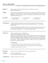 Executive Summary Resume Samples Best Of Customer Service Resume