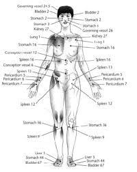 Health Good Body Chart For Direct Acupressure Acupuncture
