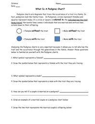 Pedigree Chart Worksheet With Answer Key Pedigree Chart Lesson Bundle Worksheet Exit Slip And Homework Included
