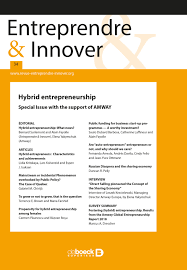 Hybrid Entrepreneurs Characteristics And Achievements Cairninfo