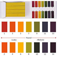 Color Chart Urine Test Strips 6bags 480pcs Multipurpose Ph 1 14 Test Strips With Color