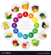 Vitamin Food Sources Colorful Wheel Chart With